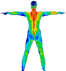 Infrared in the human body